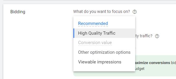 Bidding Options Google Display Campaign